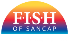 FISH of SANCAP